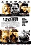 La locandina italiana di Alpha Dog