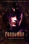 La locandina di Candyman 2 - L'inferno nello specchio