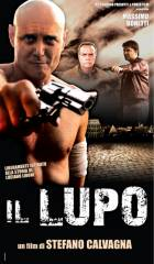 Il Lupo in streaming & download