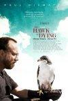 La locandina di The Hawk is Dying