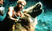 Recensione Amores perros (2000)
