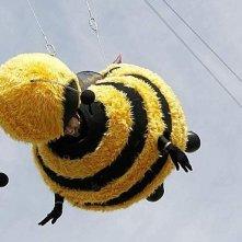 Cannes 2007: Jerry Seinfeld vestito da ape, si lancia nel vuoto per promuovere il film Bee Movie