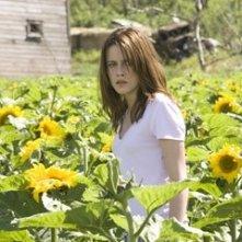 Kristen Stewart tra i girasoli in una scena del film The Messengers