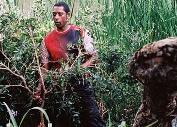 Orlando Jones In Una Scena Del Film Primeval 41941