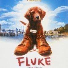La locandina di Fluke