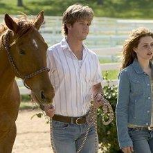 Ryan Kwanten e Alison Lohman in una scena del film Flicka