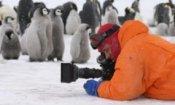 I pinguini marciano in classifica