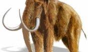 Emmerich a caccia di mammuth