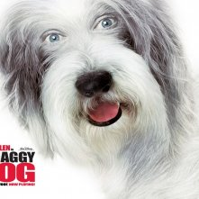 Wallpaper del film Shaggy Dog