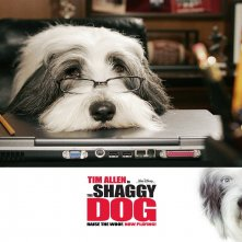 Wallpaper del film Shaggy Dog - Papà che abbaia... non morde