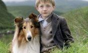 Lassie torna al cinema