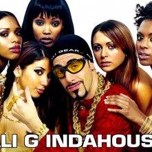 Wallpaper del film Ali G Indahouse