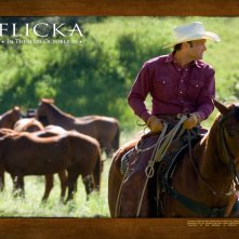 Un wallpaper del film Flicka - Uno Spirito libero