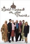 La piccola moschea nella prateria