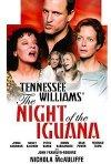 La locandina di La notte dell'iguana