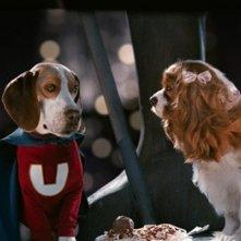 Una scena del film Underdog