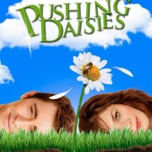 La locandina di Pushing Daisies