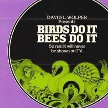 La locandina di Anche gli uccelli e le api lo fanno