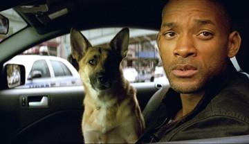 Will Smith in un'immagine di Io sono leggenda (I Am Legend)