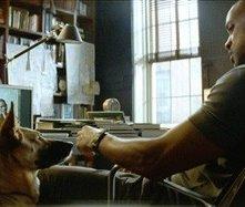 Will Smith in una scena di Io sono leggenda