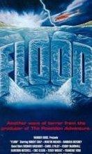 La locandina di Diluvio: la furia di un fiume