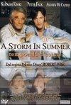 La locandina di Il temporale in estate