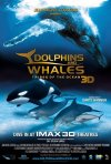 La locandina di Dolphins and Whales 3D: Tribes of the Ocean