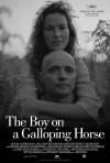 La locandina di The boy on a galloping horse