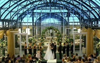 American Wedding - Trailer