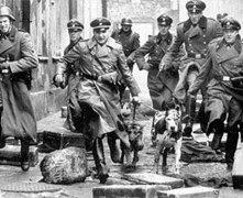 Una sequenza di Schindler's List