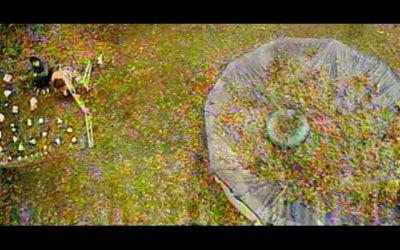 Garden State - Trailer