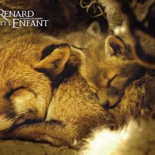 Wallpaper del film La volpe e la bambina