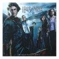 La copertina di Harry Potter e il calice di fuoco
