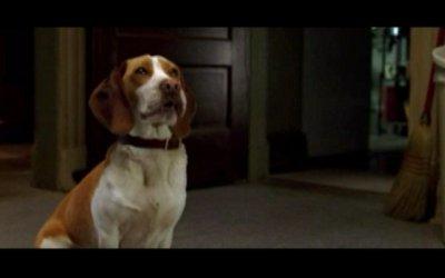 Underdog - Trailer italiano