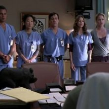 Justin Chambers, Sandra Oh, T.R. Knight, Ellen Pompeo e Katherine Heigl nell'episodio 'Losing my Religion' della serie Grey's Anatomy