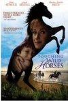 La locandina di L'isola dei cavalli selvaggi