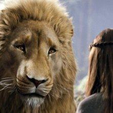 Il leone Aslan in una scena del film Le cronache di Narnia: il Principe Caspian