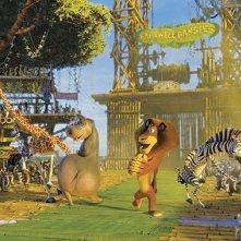 Un'immagine tratta dal film Madagascar 2 - Via dall'isola