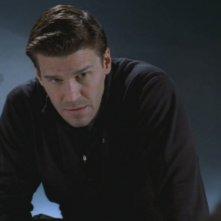 David Boreanaz nei panni di Seeley Booth nella serie 'Bones', nell'episodio intitolato: Morte di un Supereroe
