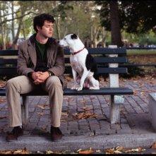 Brendan Hines in una scena di Io, lei e Babydog