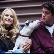 Malin Akerman e Brendan Hines, protagonisti di Io, lei e Babydog