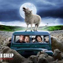 Un divertente wallpaper di Black Sheep