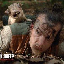 Wallpaper dello strampalato horror Black Sheep