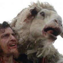 Oliver Driver e la pecora in una scena di Black Sheep