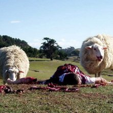 Pecore mangiano un uomo in una scena di Black Sheep