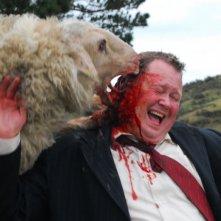 Una pecora assassina all'attacco in una scena di Black Sheep