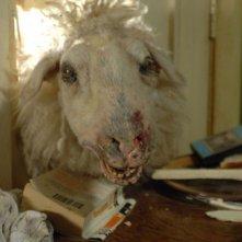 Una pecora assassina di Black Sheep