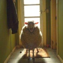Una pecora in una scena di Black Sheep