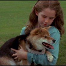 JìKatie Stuart interpreta la piccola Cassandra nell'episodio 'Il cavallo di Troia' della serie tv Stargate SG-1