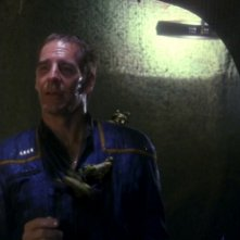 Scott Bakula ricoperto di piccoli xindi insettoidi nell'episodio 'Il nido', della serie tv Enterprise.